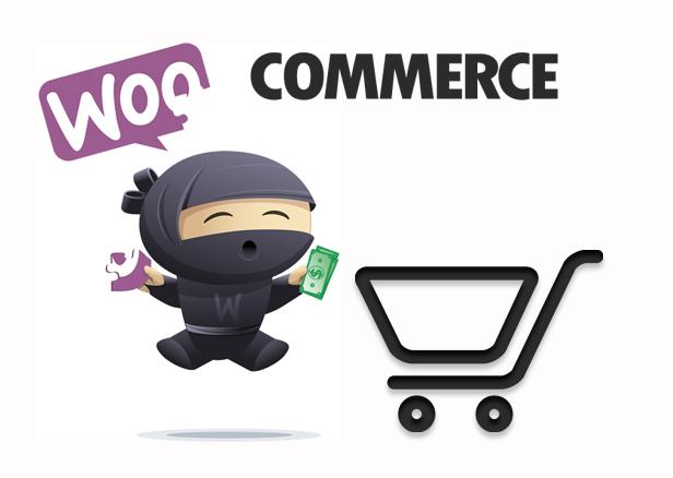 woocommerce-Wordpress-Plugin